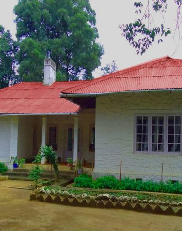 Arivikad-East-Division-Bungalow-front-1