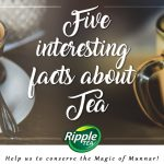 Five interesting facts about Tea